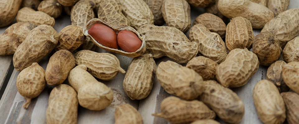 Manteiga de amendoim dieta cetogenica